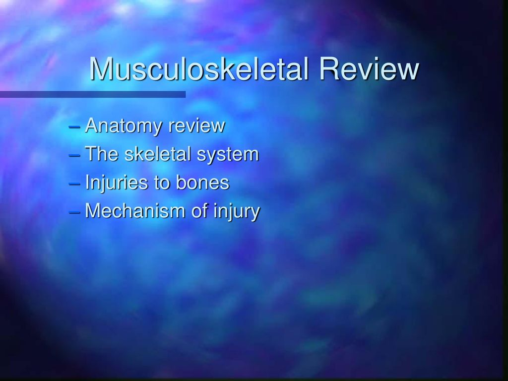 Musculoskeletal Review