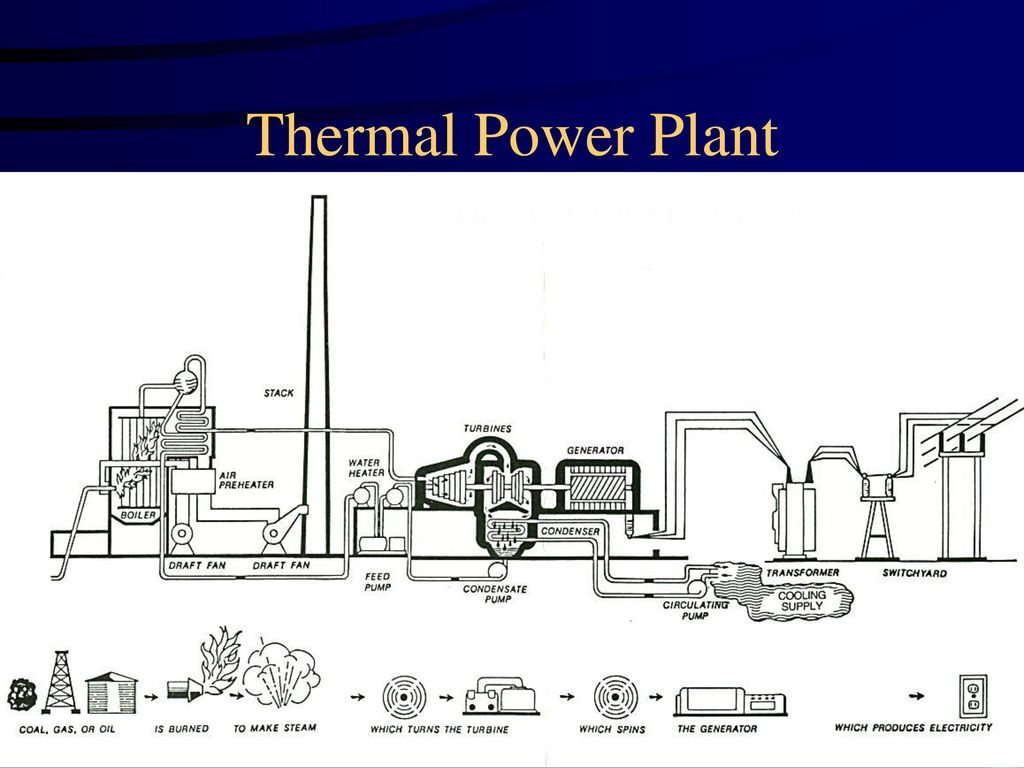 An Introduction To Electric Power Plants Ppt Download Plant Diagram Pictures 10 Thermal