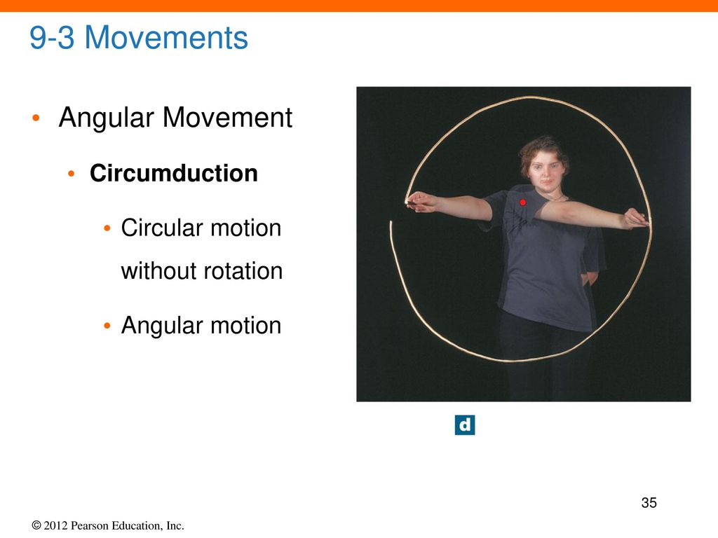 9 - Lecture Articulations. - ppt download