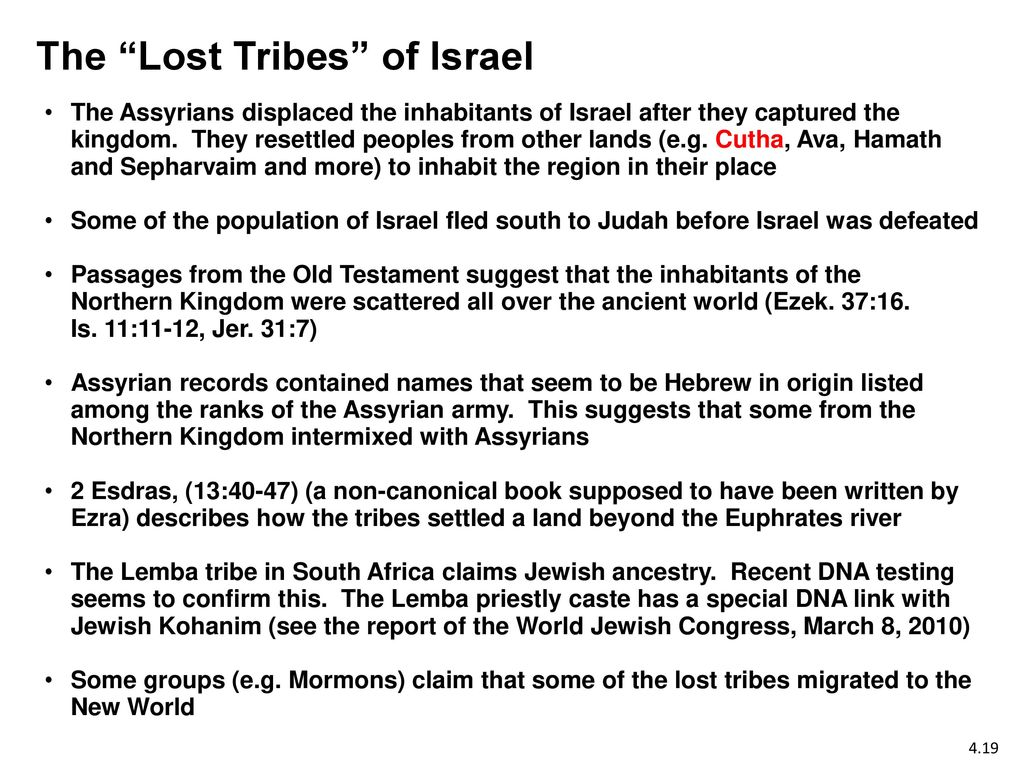the lost tribes of israel When the bnei israel first came to israel from india in 1952, little was known about their history, and their connection to the jewish people was rejected by the chief rabbi of israel however, a new genetic study has justified their claims, opening up new possibilities that one of the lost tribes.