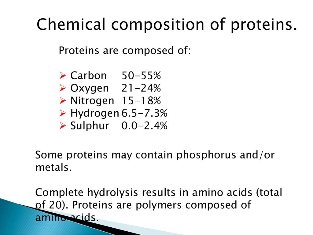 proteins chemical composition of the proteins ppt download
