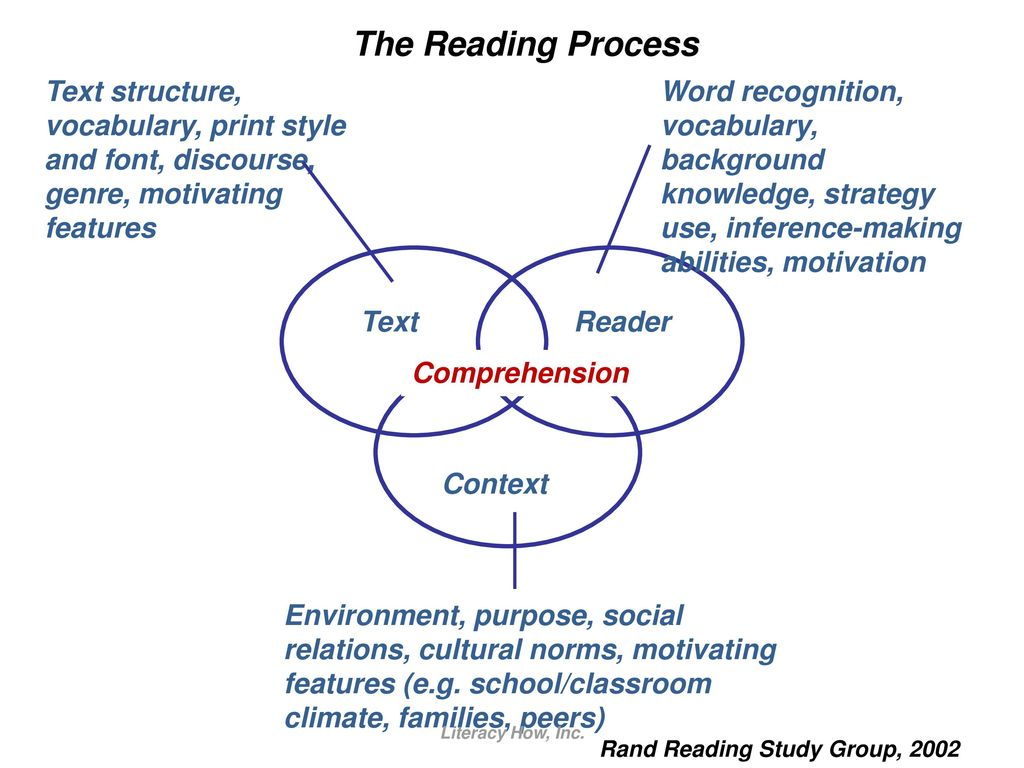 reading comprehension skills and strategies education ppt download Diagram of Hearing Sense rand reading study group (2002)