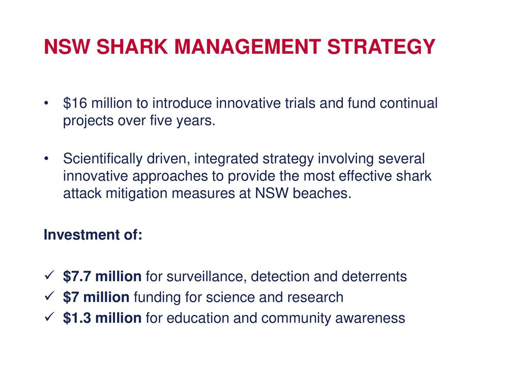 Nsw Shark Management Strategy Ppt Download Animal Scarer Hobby Circuits And Projects 8