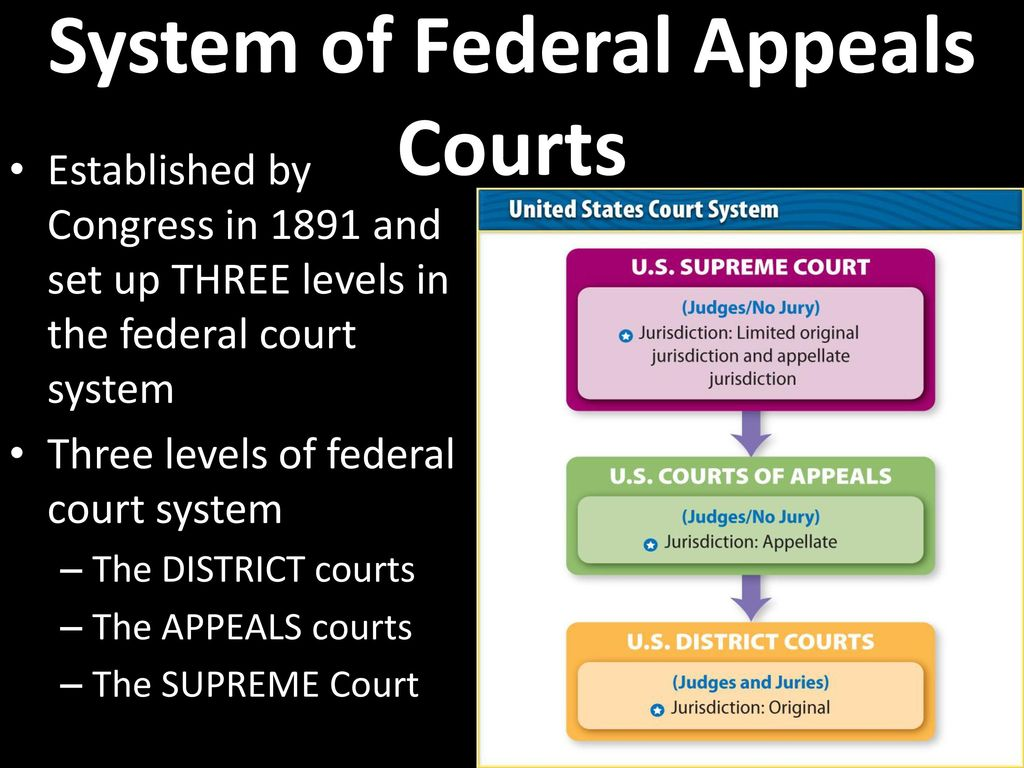 court system essay Legal system essay it comes as no surprise that the world's second most populous nation has admittedly, there are moves to clean up the legal system or de-clog the dockets of the courts.