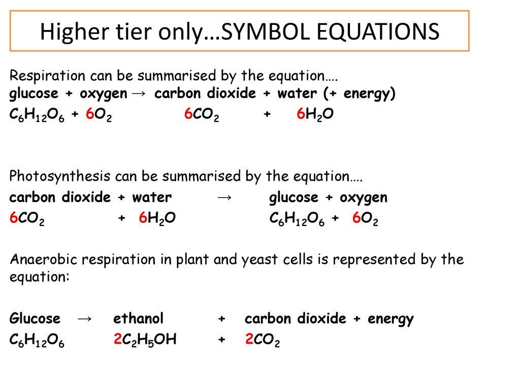 Unit 4 Bioenergetics Revision Ppt Download