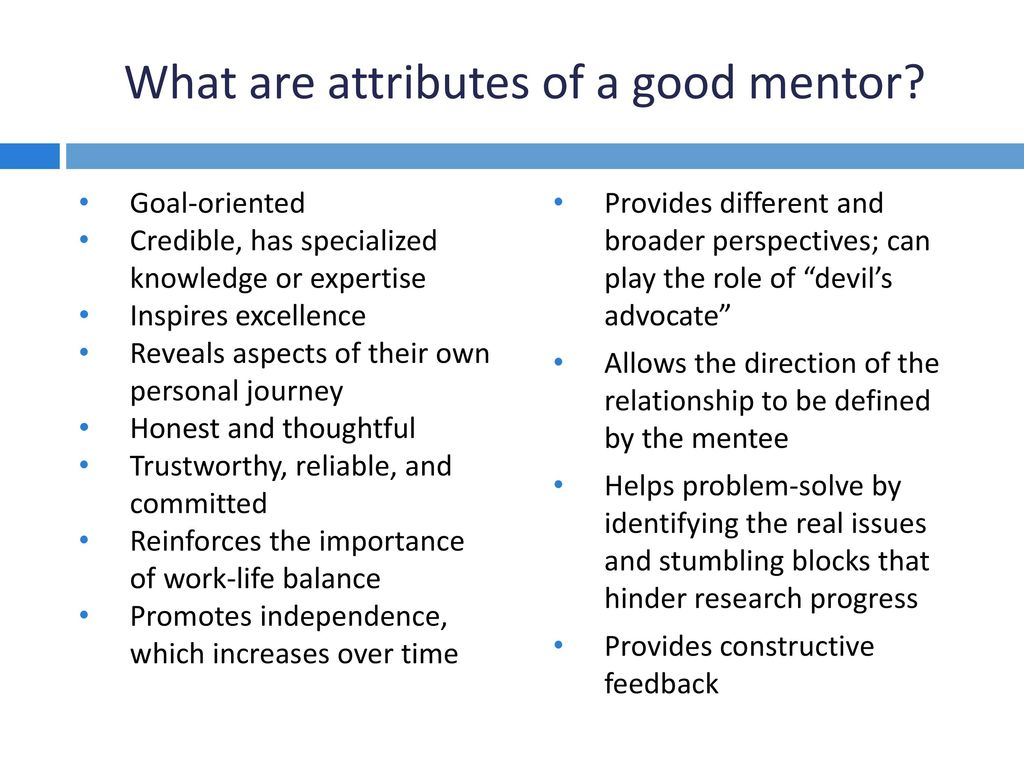what is the role of a mentor