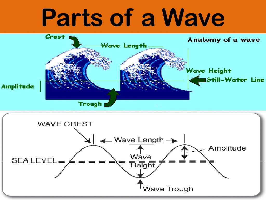 WAVES, SOUND, AND LIGHT S8P4. Students will explore the wave nature ...