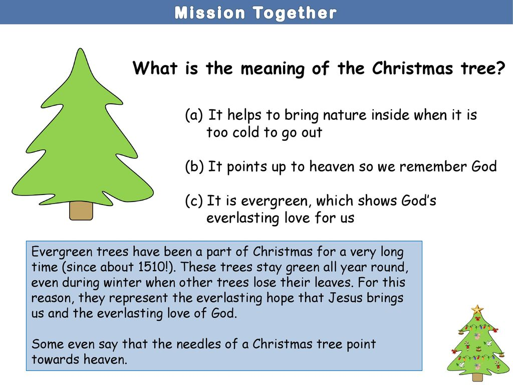 Christmas Tree Meaning.Welcome To Your Advent Symbolism Quiz Ppt Download