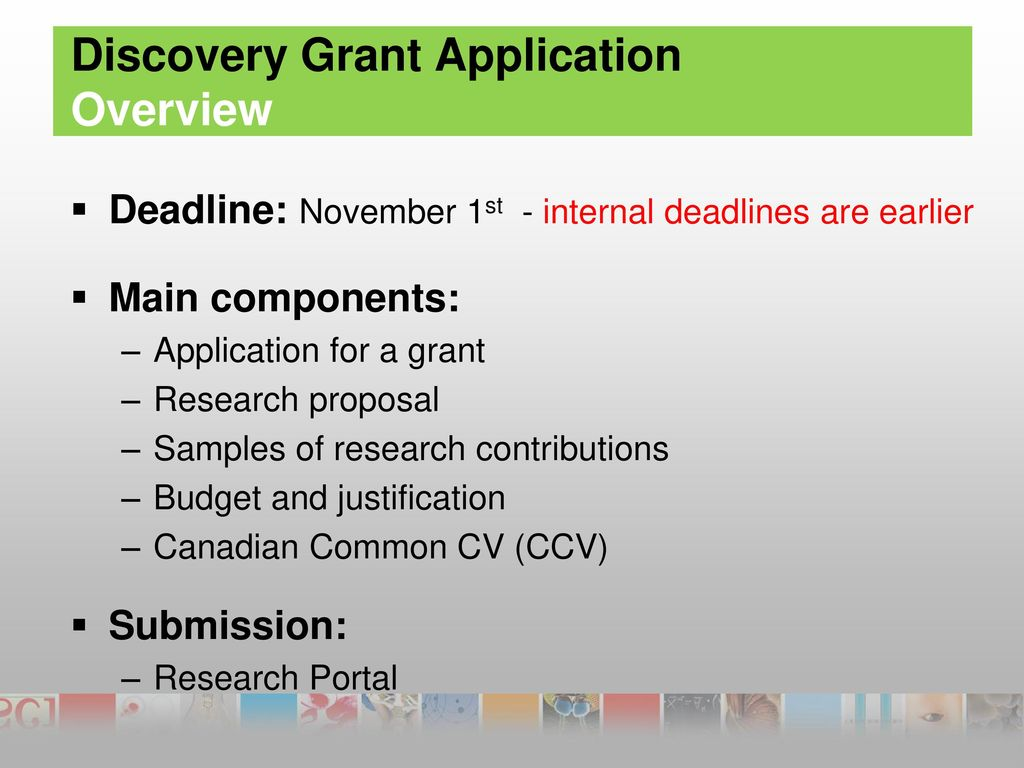 How to prepare a Discovery Grant Application - ppt download