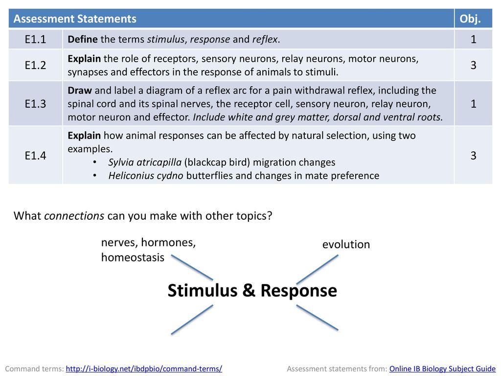 Stimulus Response Assessment Statements Obj E11 1 E12 3 E13 E