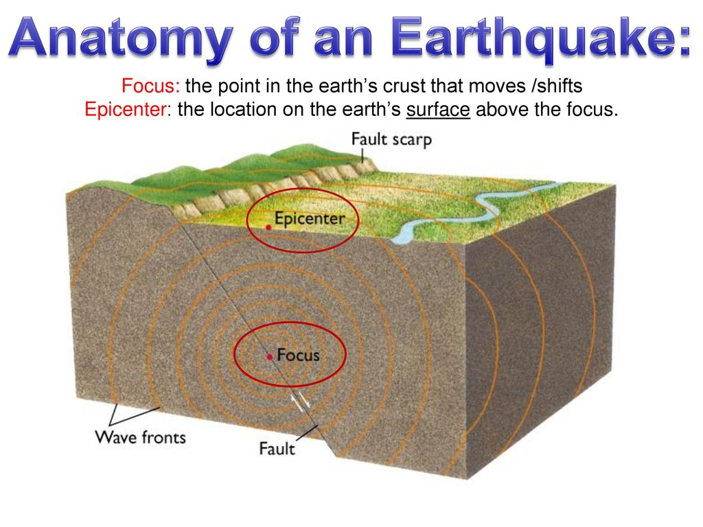 How many, how often do earthquakes occur each year? - ppt download