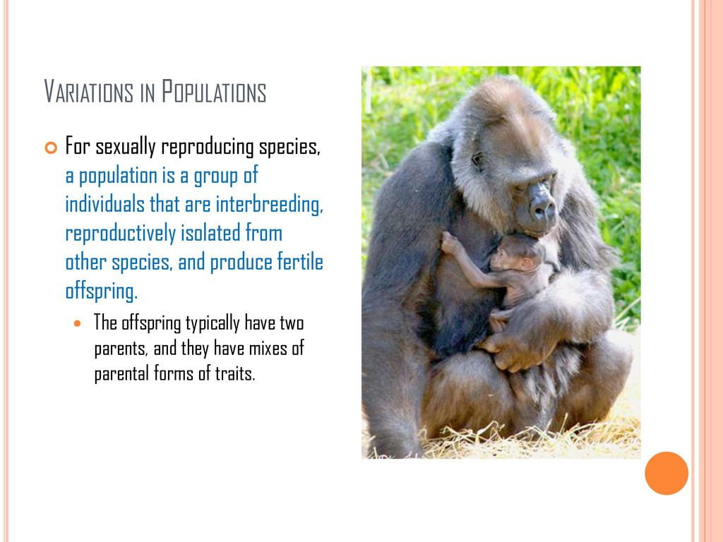 Variation in sexually reproducing species