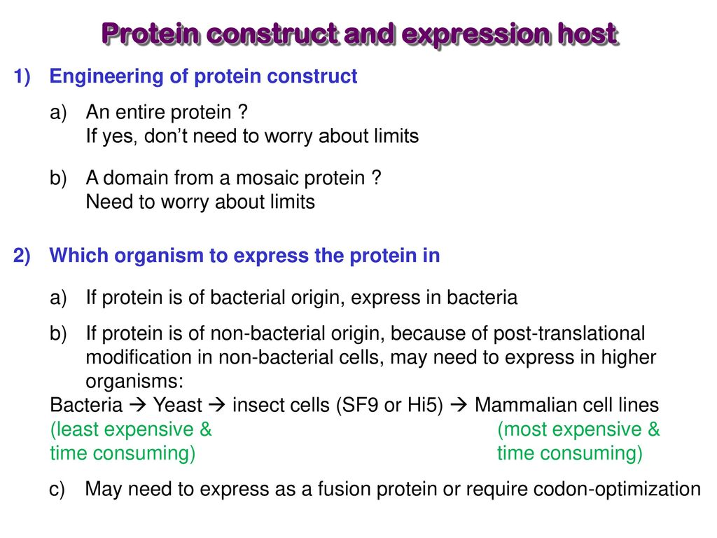 Expression & Purification of Recombinant Proteins - ppt download