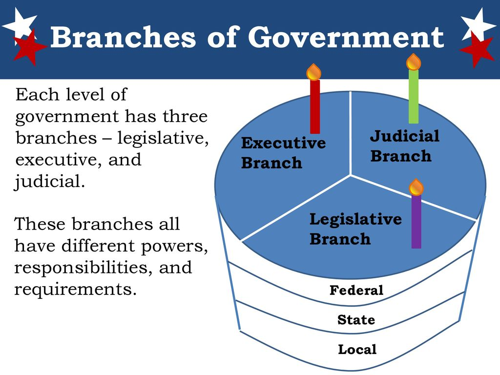 Diagram Three Branches Of Government Local Level Wiring Diagram