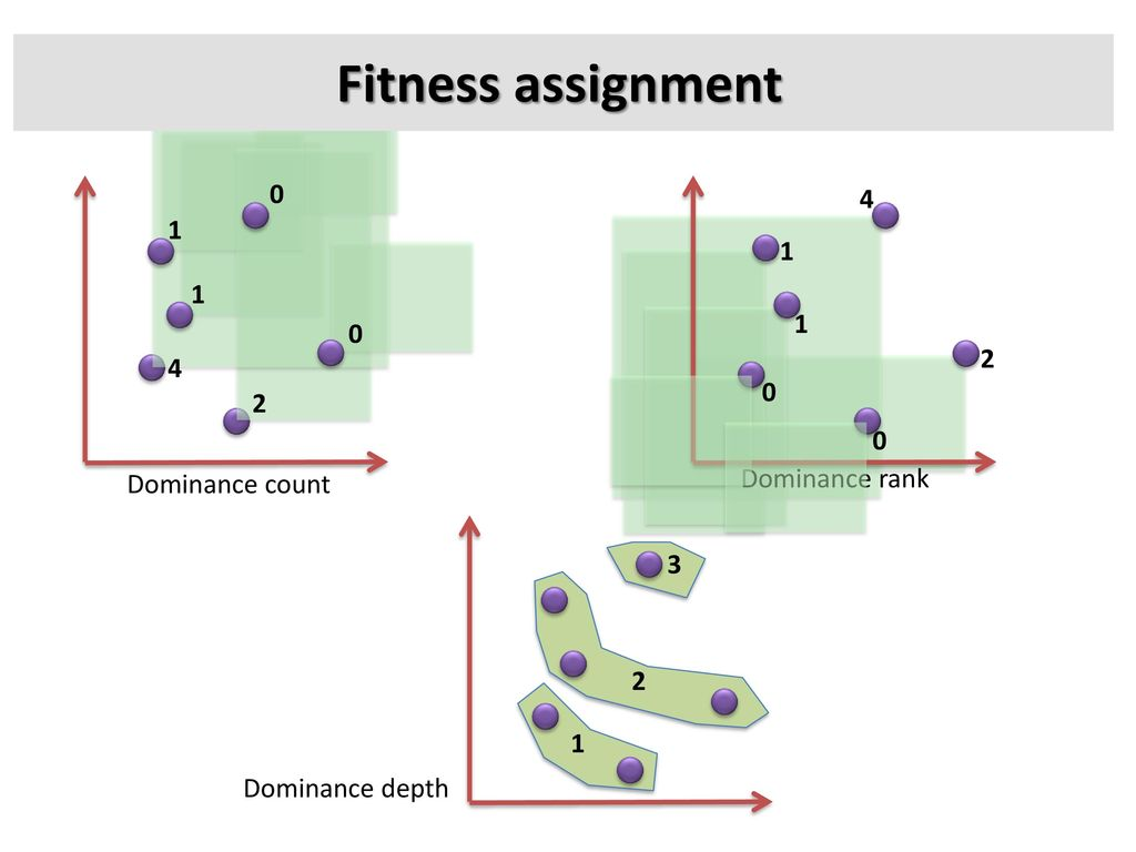 Fitness assignment Dominance rank Dominance count 3 2