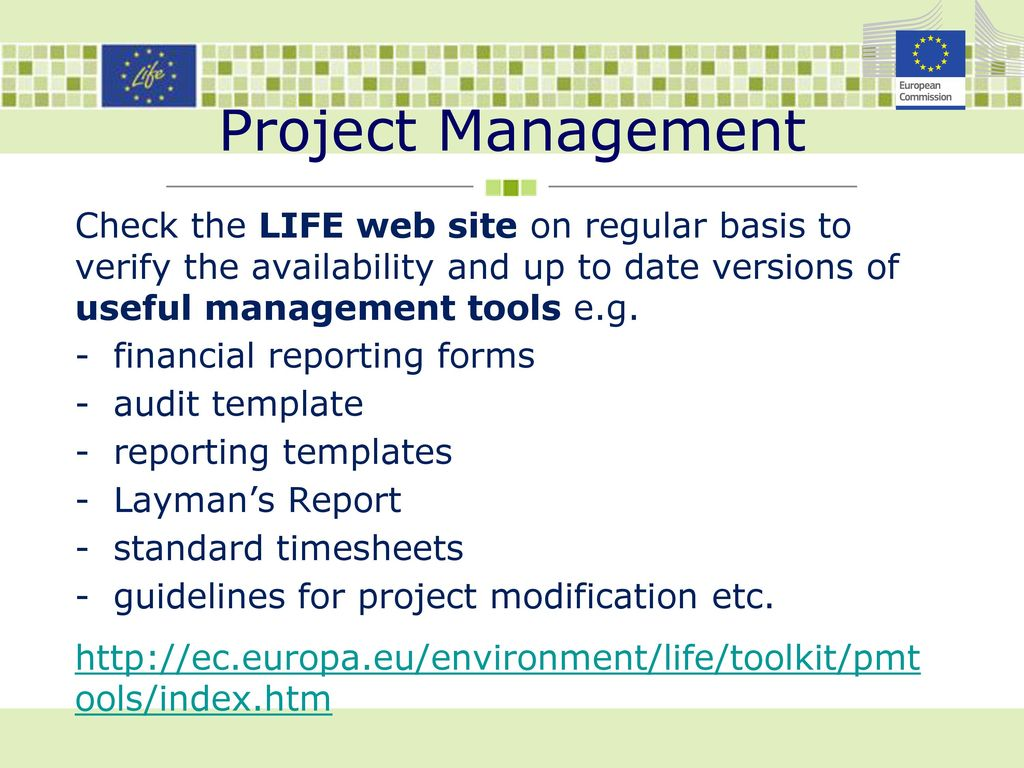 LIFE Project Management Ppt Download - Project management guidelines template