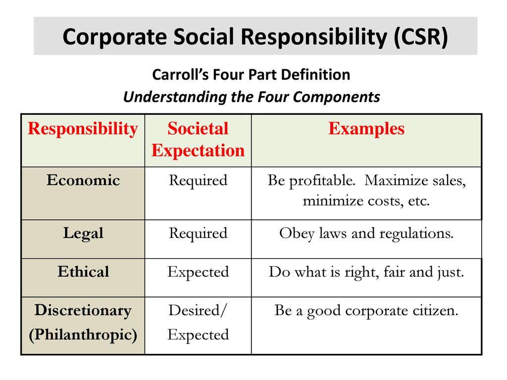 Examples Of Corporate Social Responsibility Choice Image Example