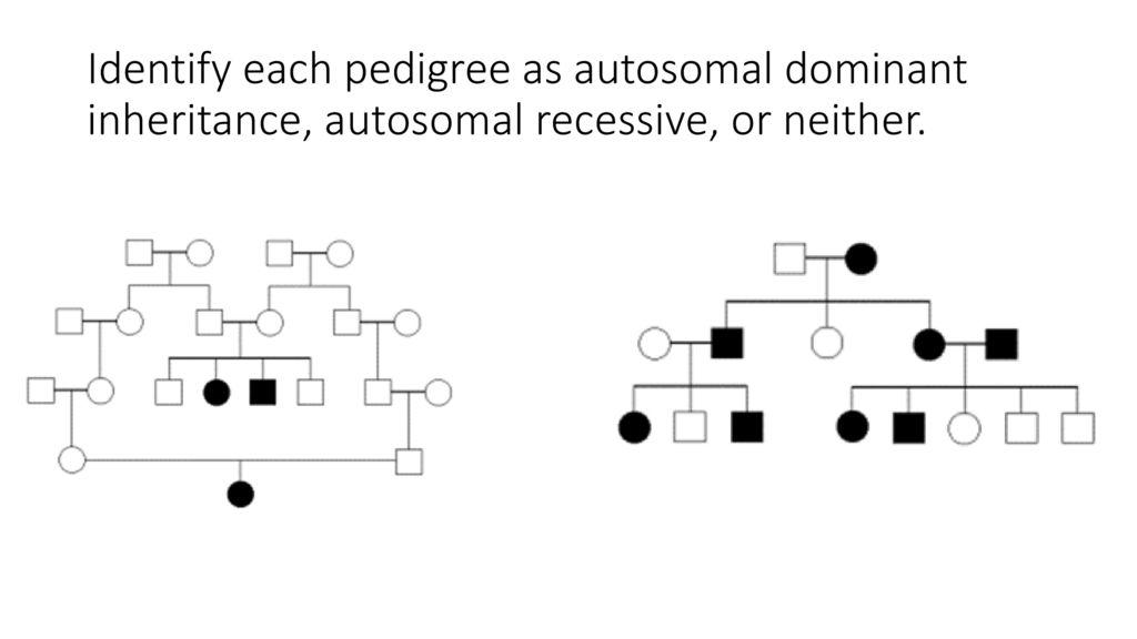 In Autosomal Dominant Inheritance Cgi Idt