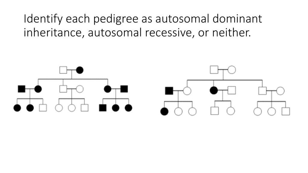 In Autosomal Dominant Inheritance Asp Date