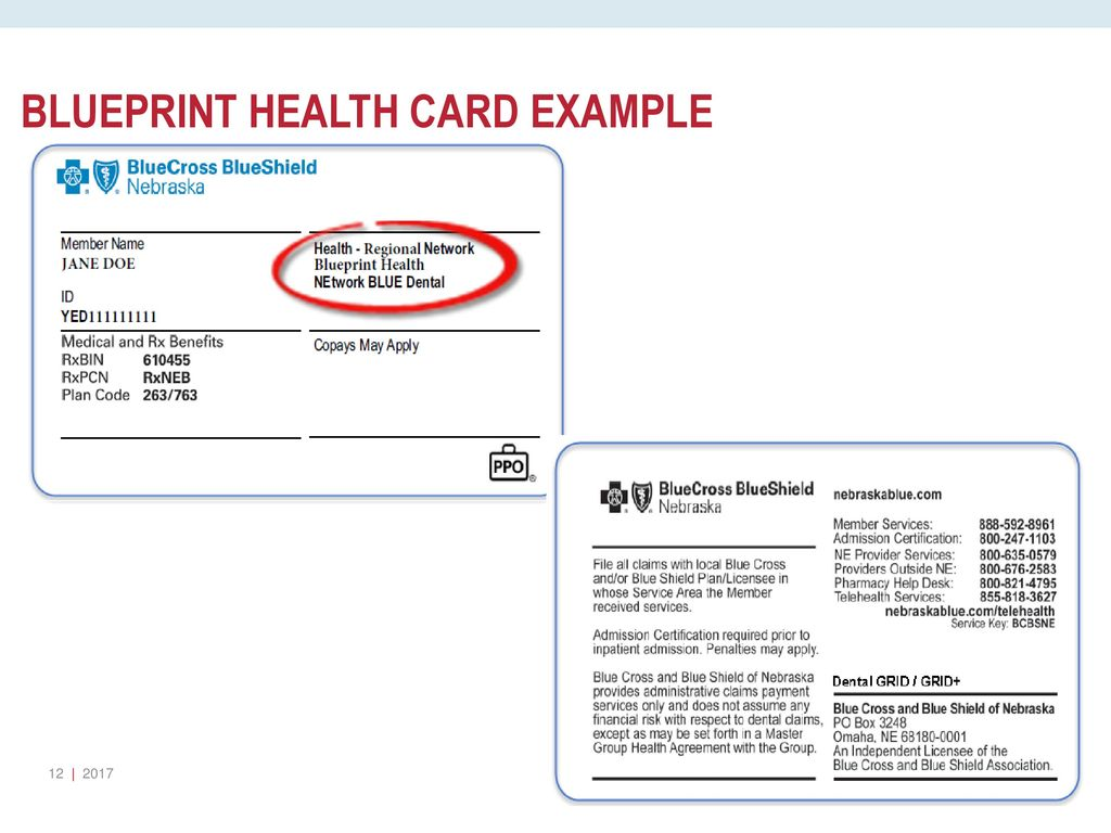 Aaham ppt download 12 blueprint health card example malvernweather Image collections