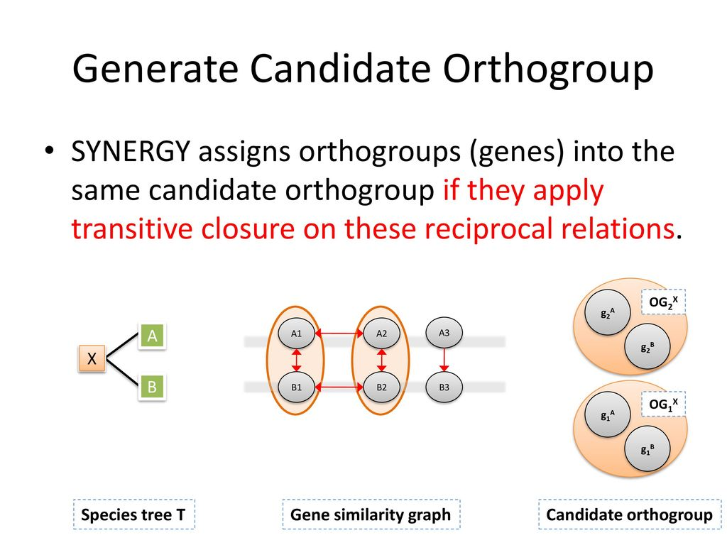 Generate Candidate Orthogroup