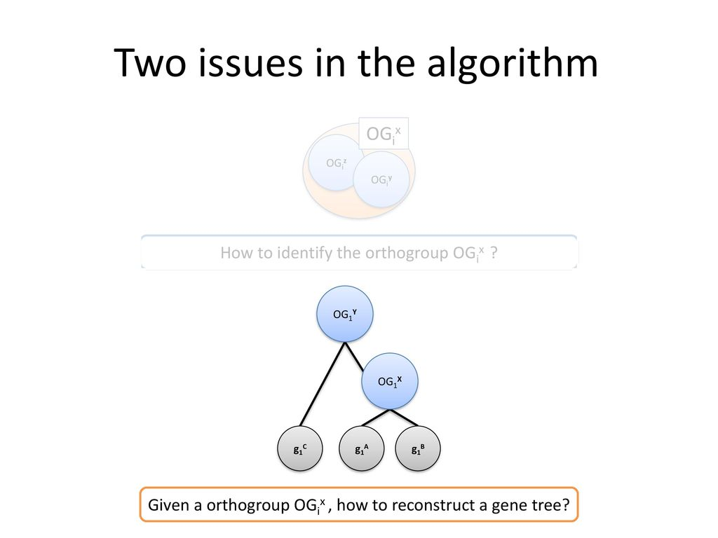Two issues in the algorithm