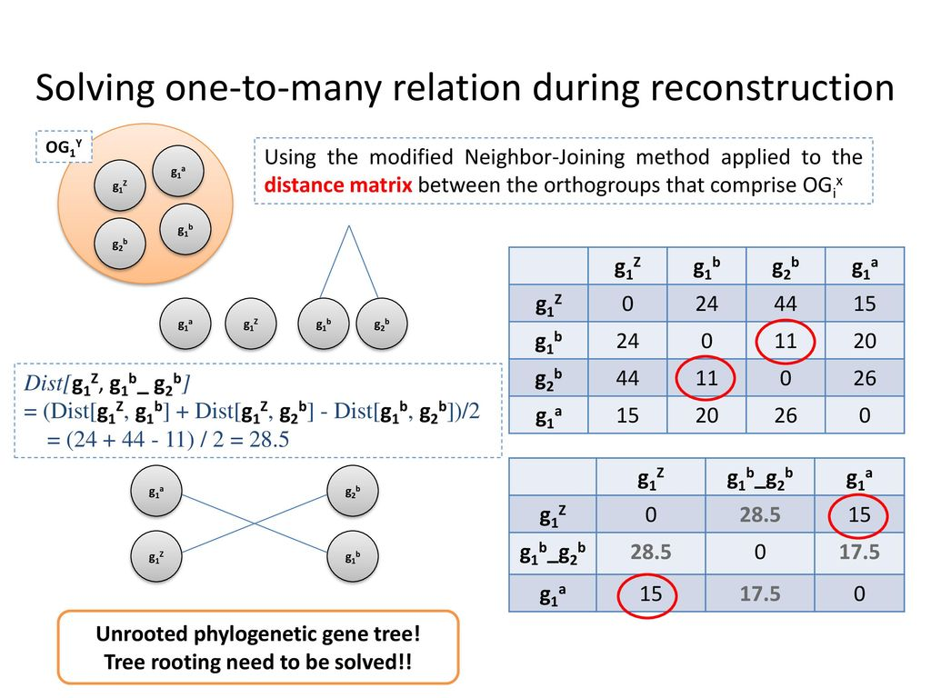 Solving one-to-many relation during reconstruction