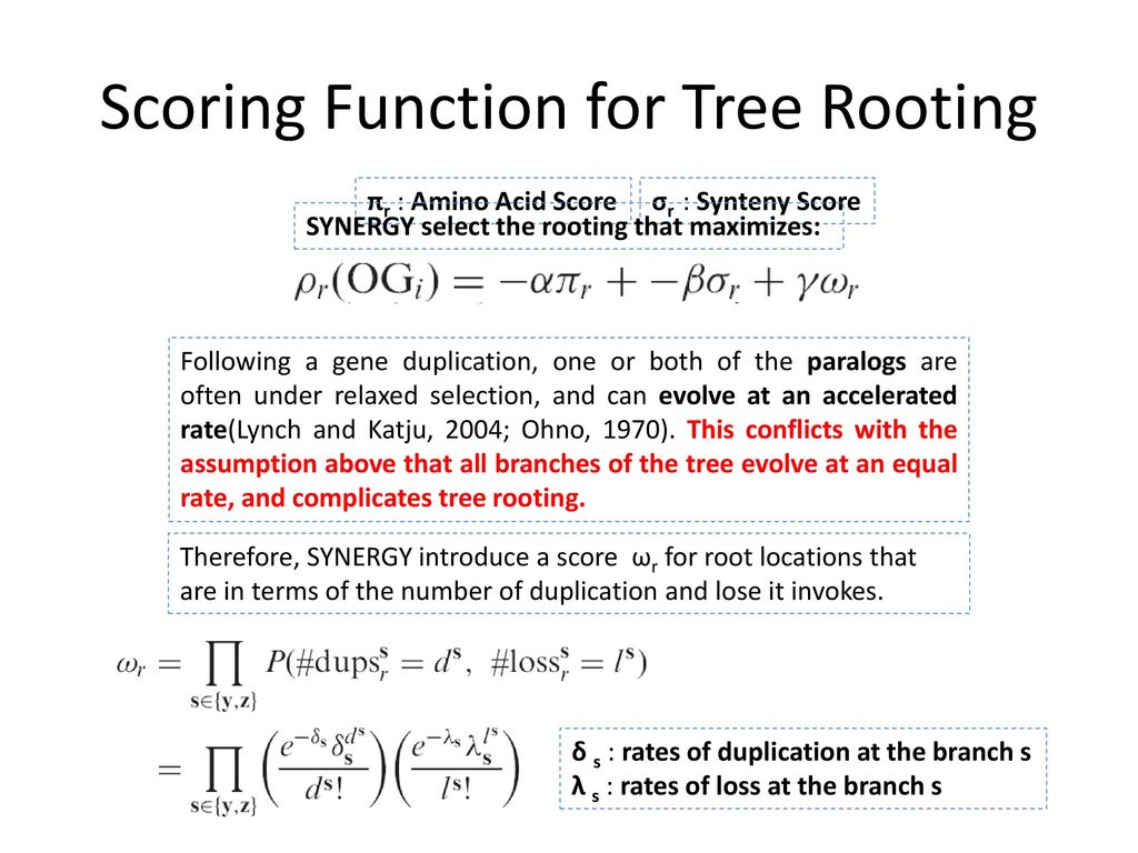 Scoring Function for Tree Rooting