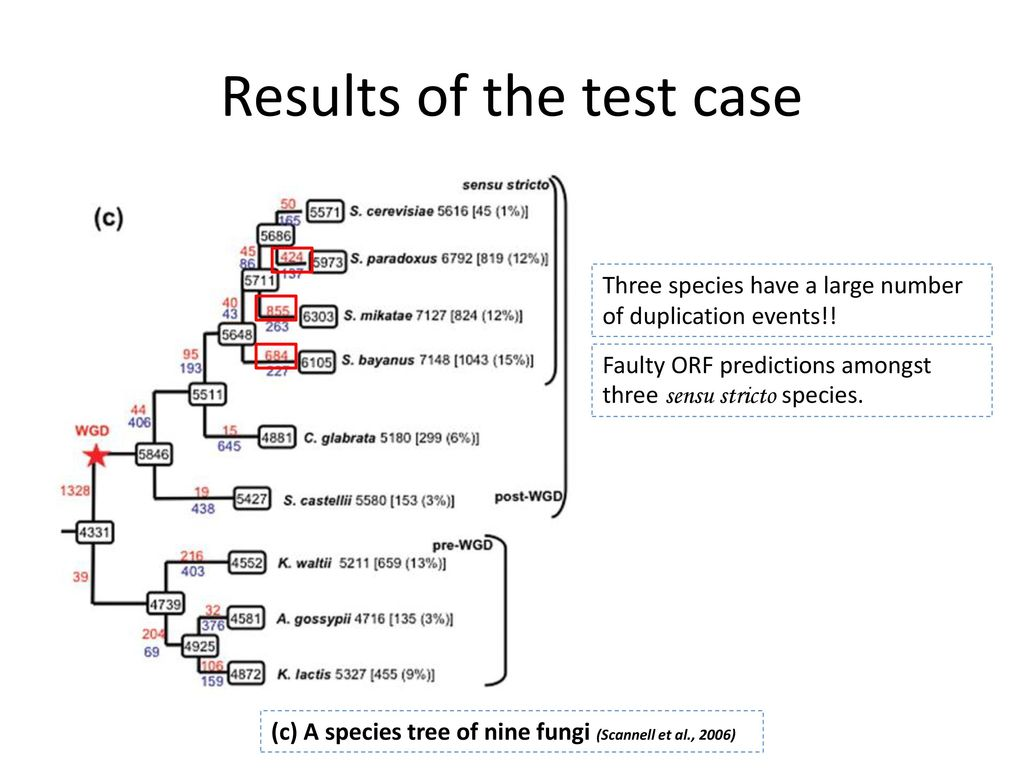 Results of the test case