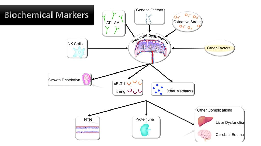 Biochemical Markers