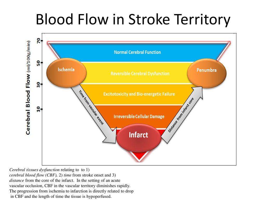 brain ischemic stroke brain ischemic stroke from diagnosis to treatment