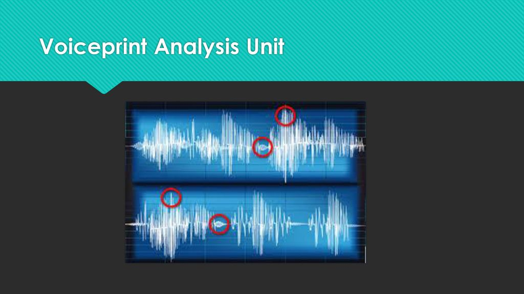 Functions Of The Forensic Scientist Ppt Download