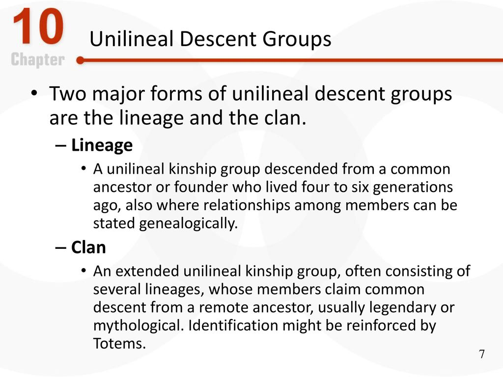 difference between clan and lineage