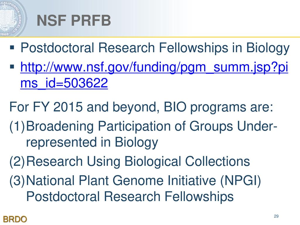 Postdoctoral Fellowships - ppt download