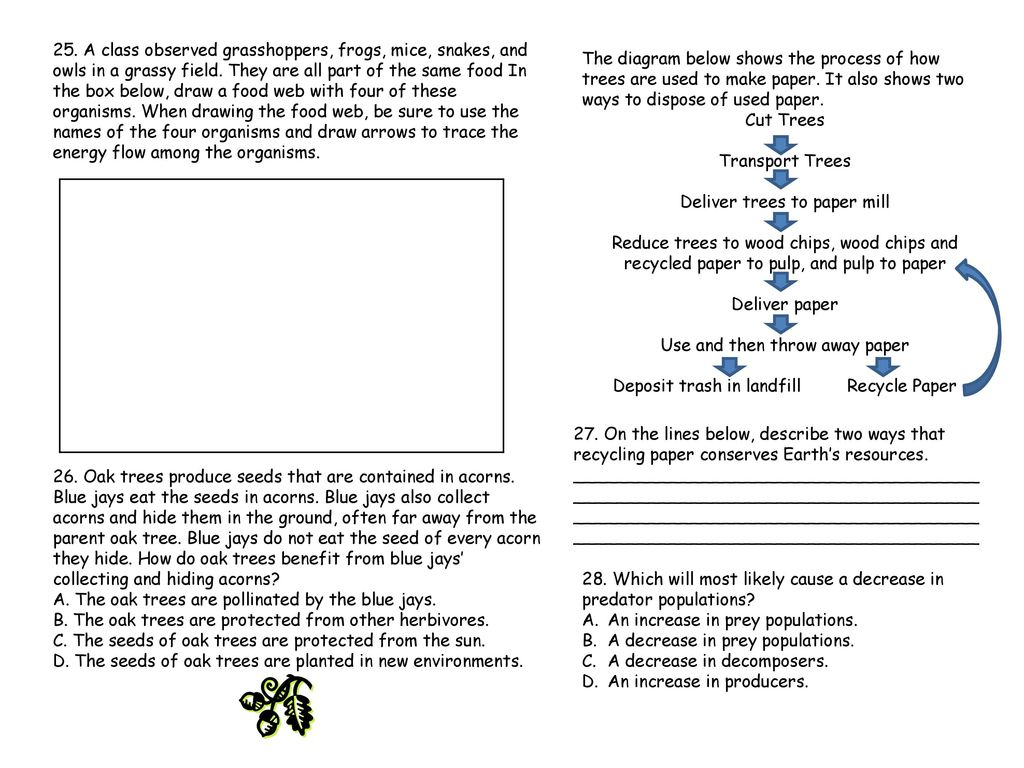5th Grade Ecosystems Test Name Ppt Download Process Flow Diagram Of Paper Mill Deliver Trees To
