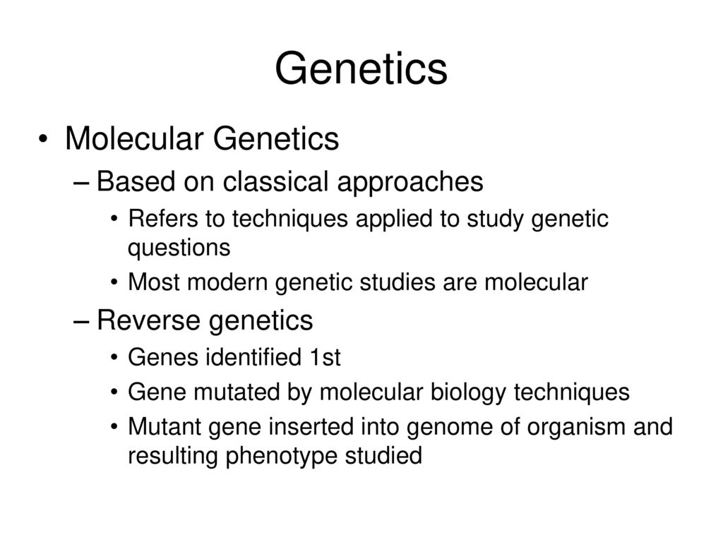 biology chapter 11 genetics study guide Study 20 biology - chapter 11: genetics flashcards from chris c on studyblue biology - chapter 11: genetics reminder edit a copy.