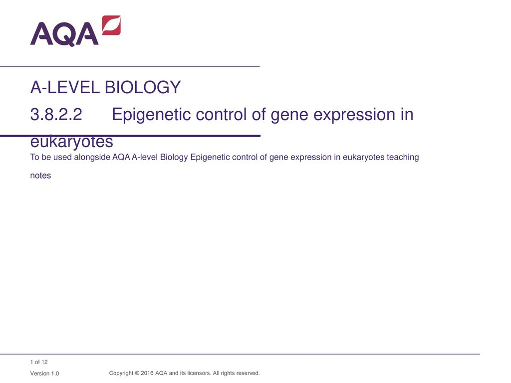 A-LEVEL BIOLOGY Epigenetic control of gene expression in