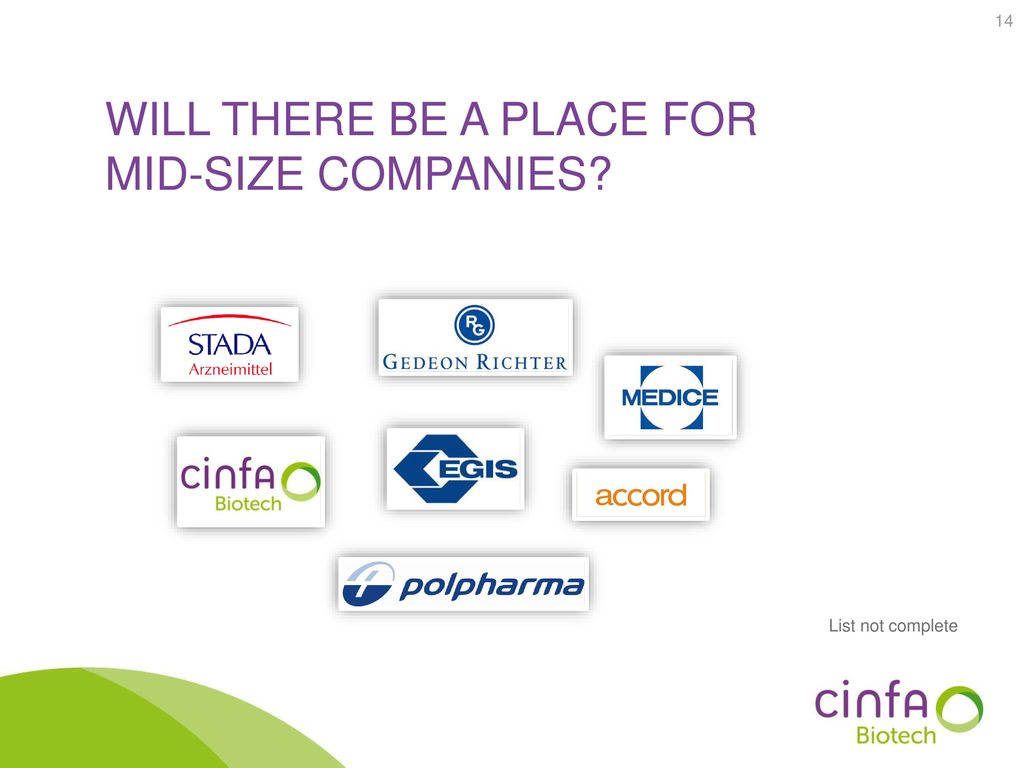 Will there be a place for mid-size companies