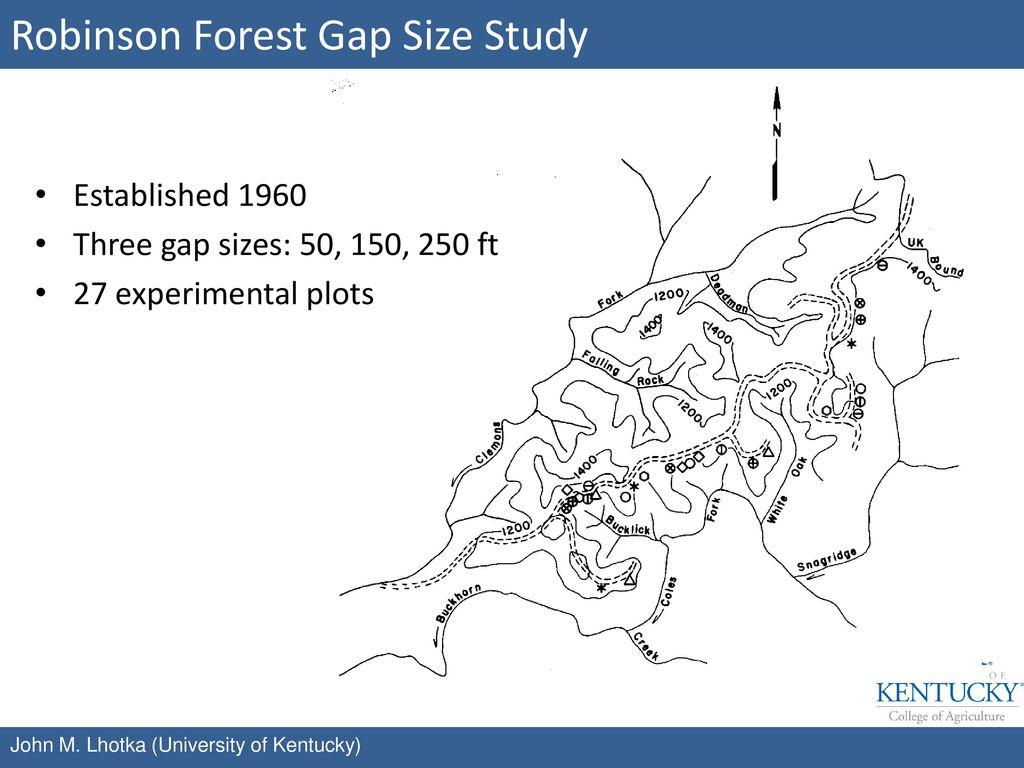 Robinson Forest Gap Size Study