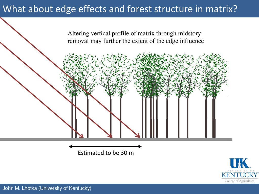 What about edge effects and forest structure in matrix