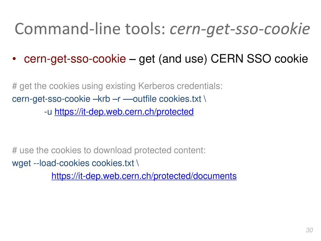 Web penetration testing CERN summer student workshop - ppt
