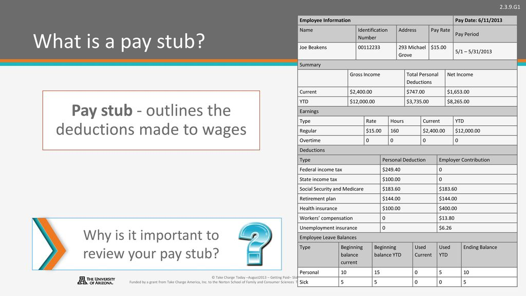 pay stub without deductions