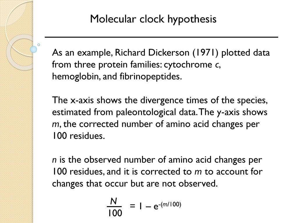 molecular clock example