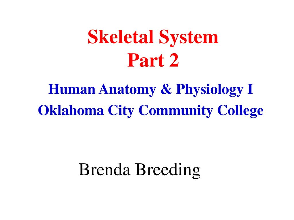 Human Anatomy & Physiology I Oklahoma City Community College - ppt ...
