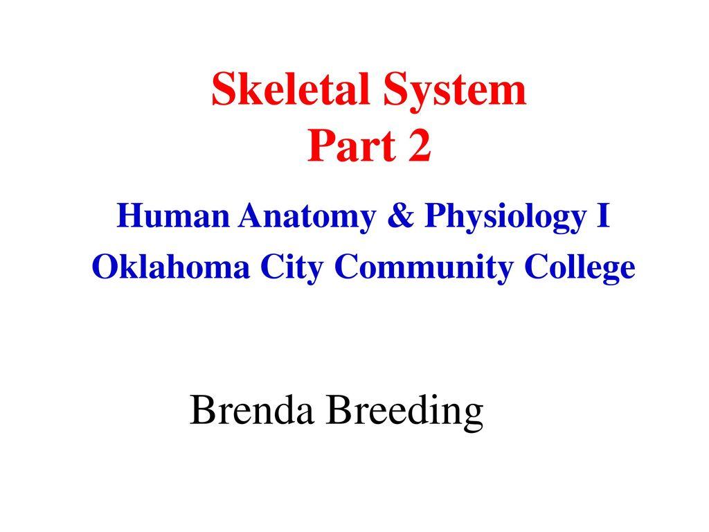 Human Anatomy & Physiology I Oklahoma City Community College - ppt ...