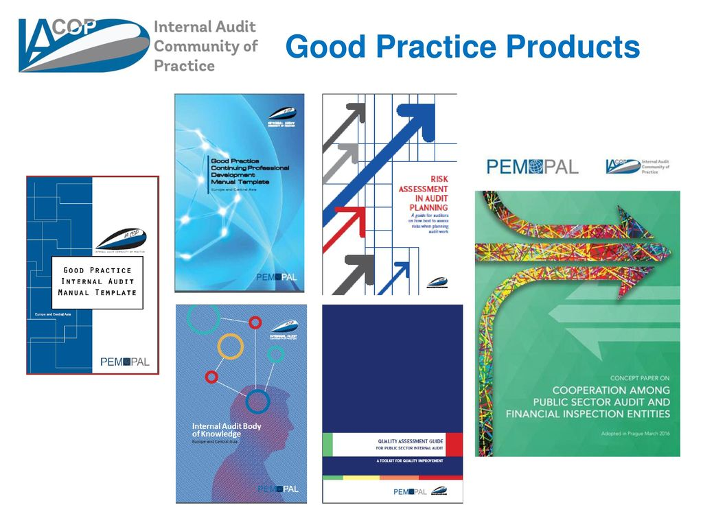 Internal Audit Community of Practice  - ppt download