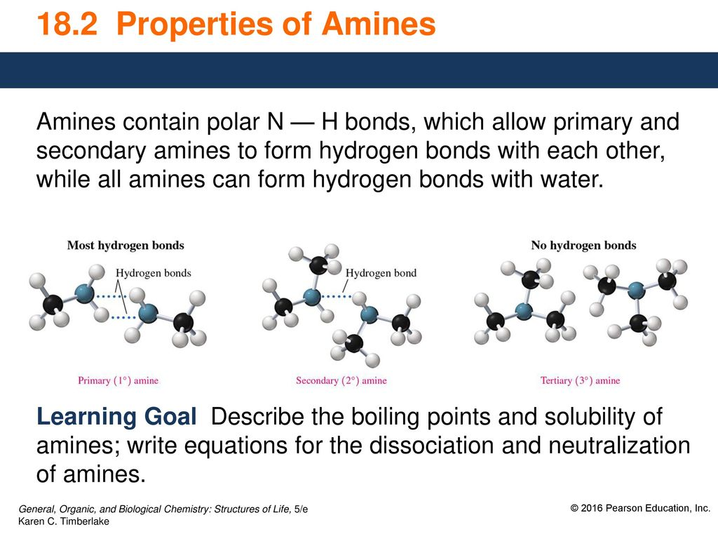 18 2 Properties of Amines Amines contain polar N — H bonds
