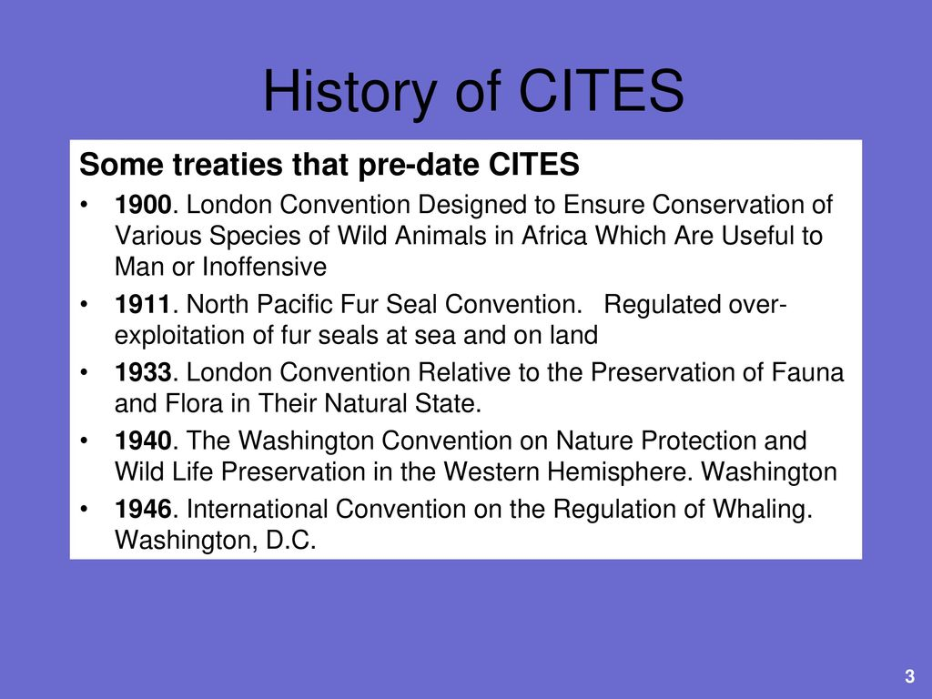 CITES and the International Wildlife Trade - ppt download