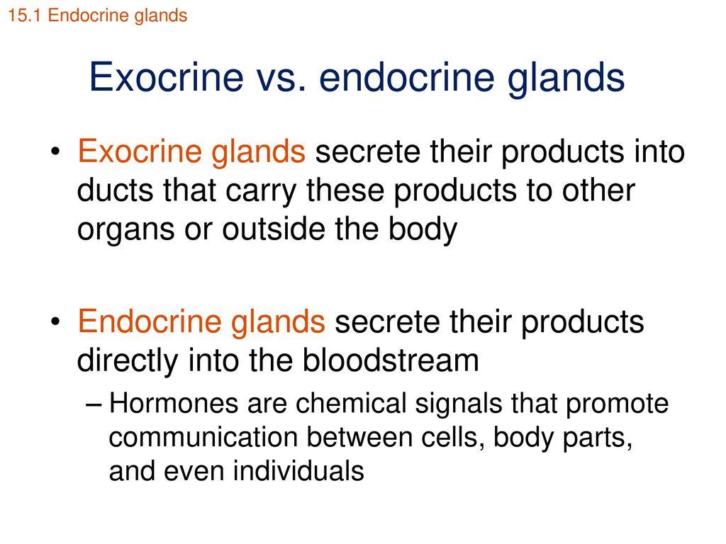 Exocrine Vs Endocrine Glands Ppt Download