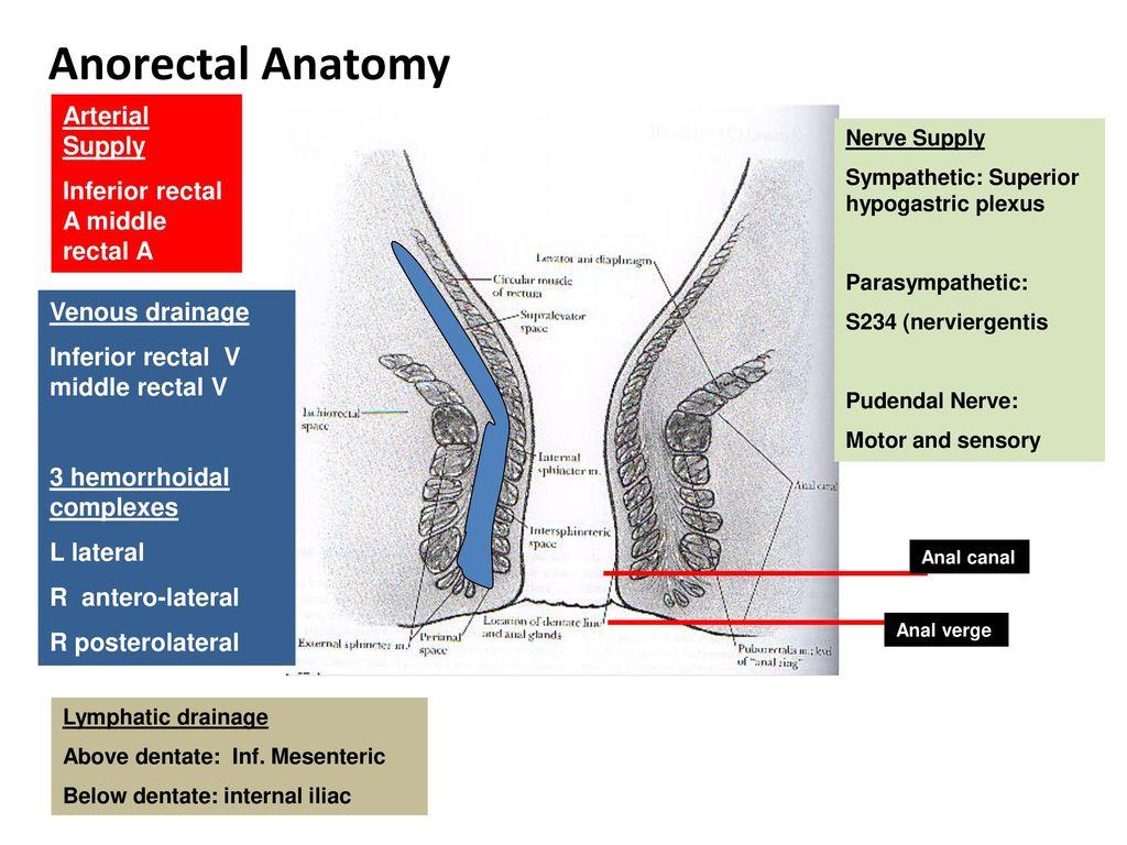 Dr Amit Gupta Associate Professor Dept Of Surgery - ppt download